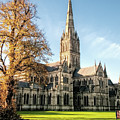 Salisbury Cathedral by Phyllis Taylor