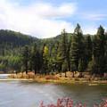 Salmon Lake Montana by Susan Kinney