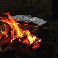 Salmon On The Fire by Elizabeth Jeffries