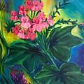 Salmon Pink Geraniums by Jennifer Christenson