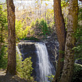Salmon River Falls by Pat Carosone