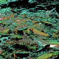 Salmon Run 10 by Chris Taggart