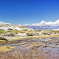 Salt Creek - Death Valley by Endre Balogh