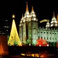 Salt Lake Temple Christmas Tree by La Rae  Roberts