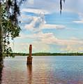 Salt Mine Disactor Monument Jefferson Island Louisiana  by Chuck Kuhn