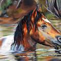 Salt River Tango by Karen Kennedy Chatham