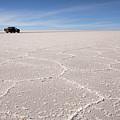 Salt Texture With Car by Aivar Mikko