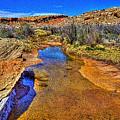 Salt Wash Near Wolf Ranch Arches Np Moab Utah by Roger Passman