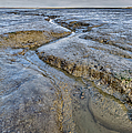 Saltings Channel by Gary Eason