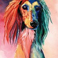 Saluki Sunset by Kathleen Sepulveda