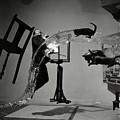 Salvador Dali  by Science Source