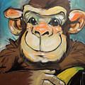 Sam The Monkey by Tim Nyberg