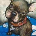 Sammy The French Bulldog by Sharon Hulme
