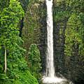 Samoan Falls 2 by Paki O'Meara