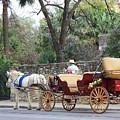 San Antonio Carriage by Carol Groenen