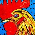 San Antonio Rooster by Neal Barbosa