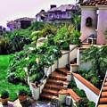 San Clemente Estate Backyard by Kathy Tarochione