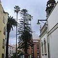 San Cristobal De La Laguna by Chani Demuijlder
