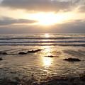 San Diego 4 by Madilyn Fox