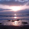 San Diego 5 by Madilyn Fox