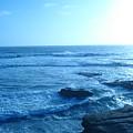 San Diego 8 by Madilyn Fox