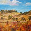 San Diego Backcountry by Carolyn Curtice