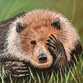 San Diego Bear by Monica Pope