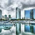 San Diego Dreams by Mel Steinhauer