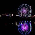 San Diego Fair by Rebecca Wineka