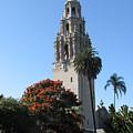 San Diego by Sandra Bourret