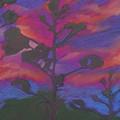 San Diego Sunset by Leah  Tomaino