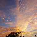San Diego Sunsrise 1 7/12/15 by Phyllis Spoor