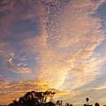San Diego Sunsrise 3 7/12/15 by Phyllis Spoor