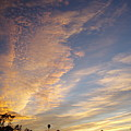San Diego Sunsrise 5 7/12/15 by Phyllis Spoor