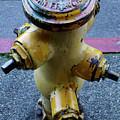 San Fran Hydrant by Bob Christopher