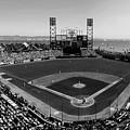 San Francisco Ballpark Bw by C H Apperson