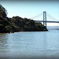 San Francisco Bay Bridge by Joy Patzner