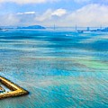 San Francisco Bay by Ches Black