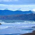 San Francisco Bay by Sharon Wunder Photography