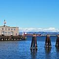 San Francisco Bay Trail View by Matt Quest
