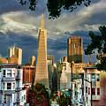 San Francisco Cliff by Blake Richards