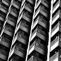 San Francisco  Financial District by Edward Hernandez