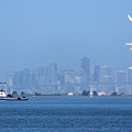 San Francisco From Alameda by Rogers