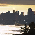 San Francisco - From Tamalpais East by Soli Deo Gloria Wilderness And Wildlife Photography