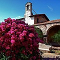 San Juan Capistrano Mission by Dawn Young