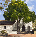 San Luis Mission by Sharon Foster
