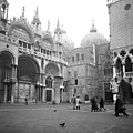 San Marco Piazza And Basilica In Venice by Emanuel Tanjala