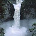 San Rafael Falls  by Tui De Roy