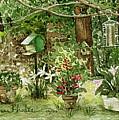 Sanctuary by Anne Rhodes