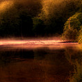 Sanctuary by Tom Mc Nemar